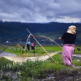 fishing by Arubam Meitei - People Street & Candids ( nature, manipur, green, fishing, women )