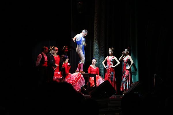 Ballerino di flamenco di cristiansantoro95