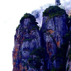 PIllar Rock by Mathangi Jeypal - Nature Up Close Rock & Stone ( mountains, nature, rock, beauty, kodaikkanal )