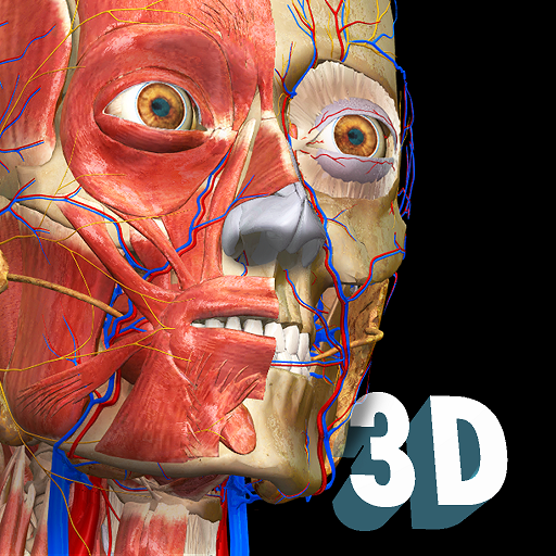 Anatomy Learning – Atlas de anatomia 3D