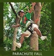 parachutefall