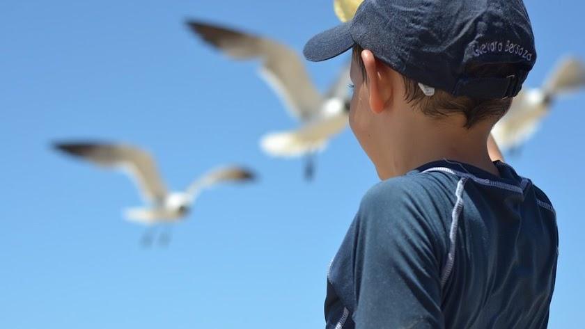 Beneficios de la playa en niñas y niños con discapacidad.