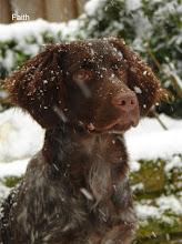 Photo: FAITH in de sneeuw