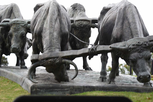 DSC_0248.jpg - A statue of bulls in the center of Montevideo, expressing the hard work it was to develop the area.