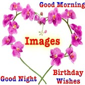 Birthday Wishes, Good Morning, Good Night Images
