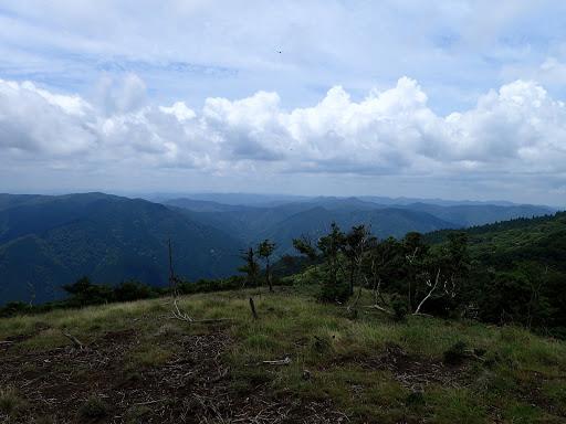 京都方面の山