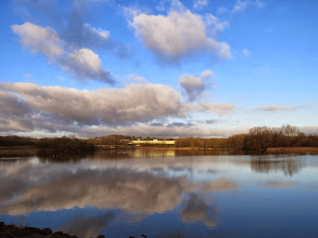 Photo: Priorslee Lake Almost a watercolour painting in this light. (Ed Wilson)