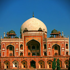 Humayun tomb, South Delhi, Delhi by Prasanna Natarajan - Buildings & Architecture Statues & Monuments