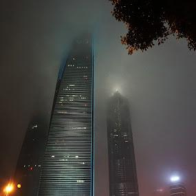 Rainy Night in Shanghai by Sunny Zheng - City,  Street & Park  Night