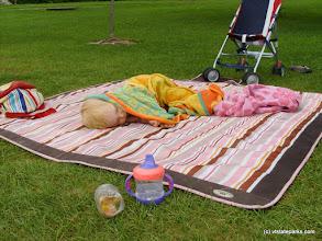 Photo: Enjoying a nap at Boulder Beach State Park by Michelle Boucher