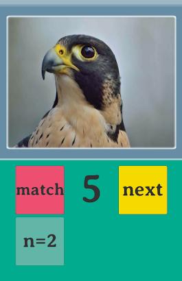 Pics-n-match- screenshot thumbnail