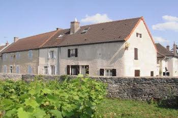 maison à Chassagne-Montrachet (21)