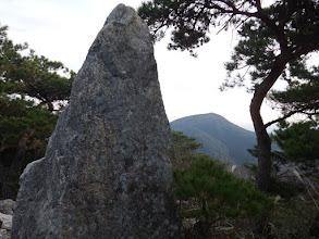 山頂の岩(右奥に福王山)