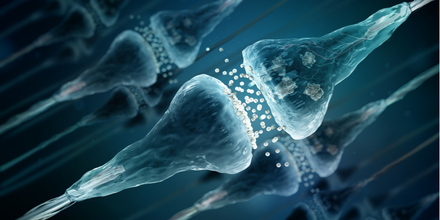 neurotransmitters-passing-between-neurons