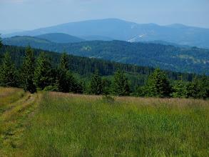 Photo: Z Jałowca zjeżdżamy żółtym szlakiem w dół, a przed nami Masyw Pilska z Halą Miziową.