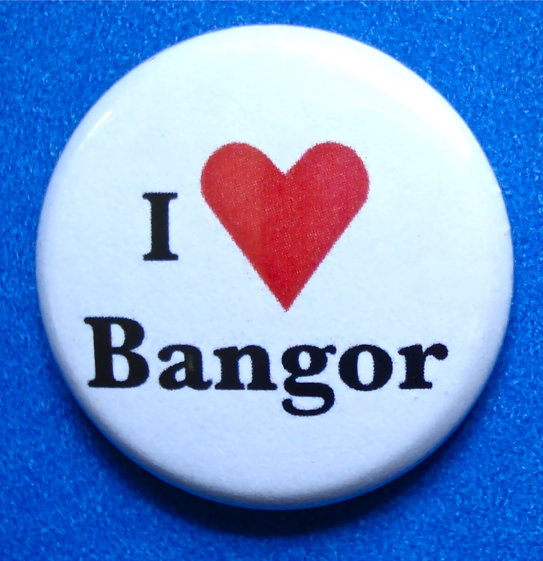 Photo: That's it in a nutshell, I do LOVE Bangor.  The people, the place, the exhibition and museum, I had a stupendously fantastic time there!  (C) Ruth Marshall, 2012.