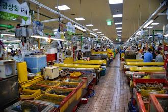 Photo: Jagalchi fish market (indoor)