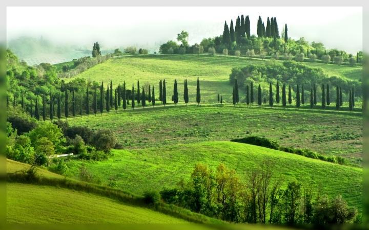 Terra di Toscana di mauro56