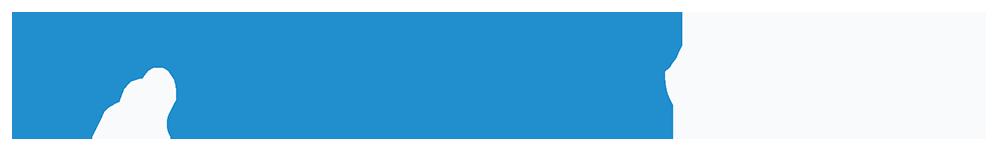 Enterprise DNA Analyst Cloud White Logo Name