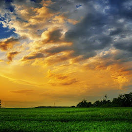 20130519_DSC_3254 by Zsolt Zsigmond - Landscapes Prairies, Meadows & Fields ( sky, field, light, sunset, skyclouds, colors )