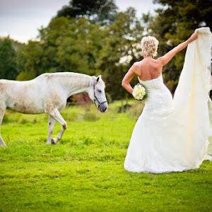 Bride_portrait_01.jpg