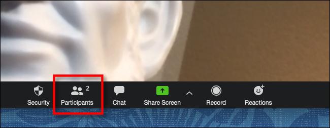Click Participants in Zoom Toolbar