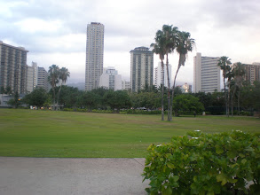 Photo: view of random bldgs from across the park