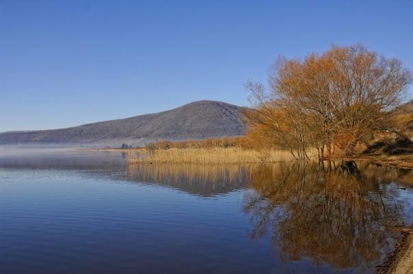 L'oro del lago di si