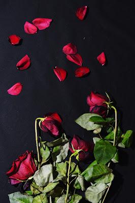 4 rose di valen85