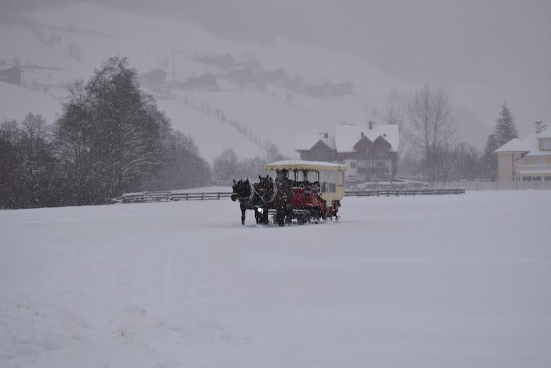 Neve è magia di francesca_vigolo
