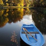 сонник плавать в озере