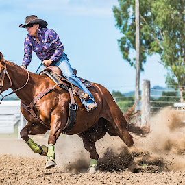 Speed to First by Sarah Sullivan - Sports & Fitness Other Sports ( #toogoolawah, #sarahsullivanphotography, #barrelracing, #qbra )