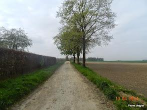 Photo: en