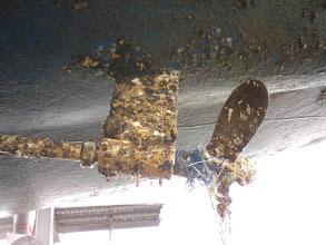 Photo: 上架するとプロペラがこんな状態に(~_~; 番屋クルーズの帰りに巻きついた釣糸です