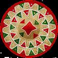 আই অসমী (Aiashomi) - The Assamese Social App