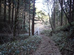 右から林道出合