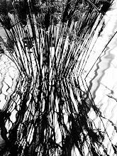 "Photo: ""Frequency Theory"" ~ NYC © 2011 Skip Hunt :: kaleidoscopeofcolor.com"