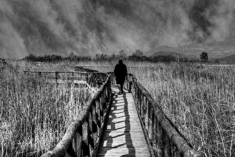 Il solitario....... di Gianluca Presto