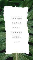 Spring Plant Sale - Facebook Story item