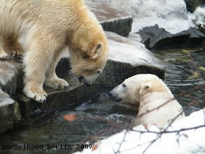 Photo: Los, komm schon ins Wasser, Gianna ;-)