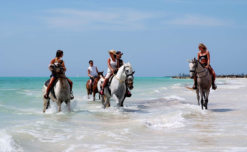 Enjoy horseback riding in the surf on Grand Bahama Island.