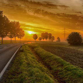 On my way home by Jürgen Sprengart - Landscapes Sunsets & Sunrises ( trees, road, sunrise )