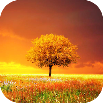 Awesome-Land Pro Live wallpaper