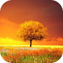 Awesome Land FondosAnimadosPro icon