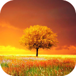 Awesome-Land Pro Live wallpaper 3.1.3 (Paid)
