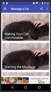 Massage Cat - náhled