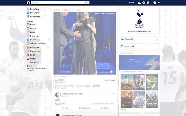Tottenham Hotspur Theme for Facebook