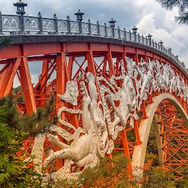 by Stanley P. - Buildings & Architecture Bridges & Suspended Structures