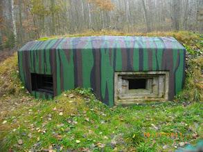 Photo: odkrycie w lesie