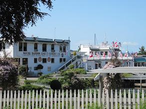 Photo: (Year 2) Day 334 - Roche Harbor #5